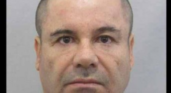 'El Chapo' prison director freed, but authorities maintain she had role in escape