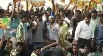 Protesters in Chennai, India, throw stones and burn cars over bull-riding ban
