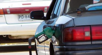 Study links diesel pollution to heart damage