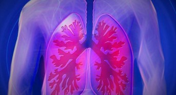 Researchers build first functional vascularized lung scaffold