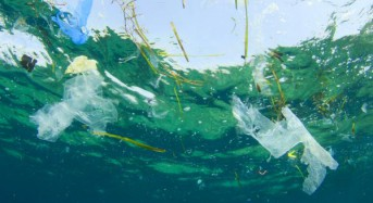 European Commission proposes ban on straws, plastic cutlery