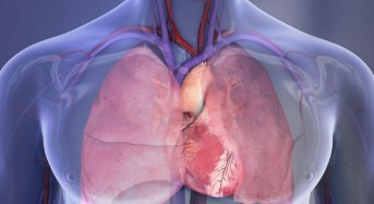 Rapid heart imaging system may improve care in developing nations