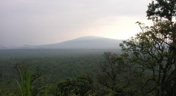 Ranger killed in latest attack on Congolese national park