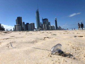 A bluebottle jellyfish washed up on Surfer's Paradise beach in Queensland, Australia, over the weekend. Photo by EPA-EFE/Queensland Ambulance Service Handout