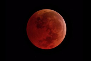 super-blood-wolf-moon-will-be-last-total-lunar-eclipse-until-2021