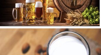 Beer is better for you than milk, says PETA